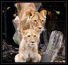 Stolze Mama mit Töchterchen...