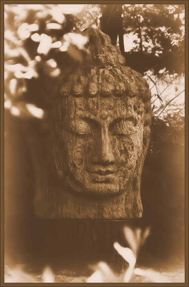 Stone Buddha bust in the garden