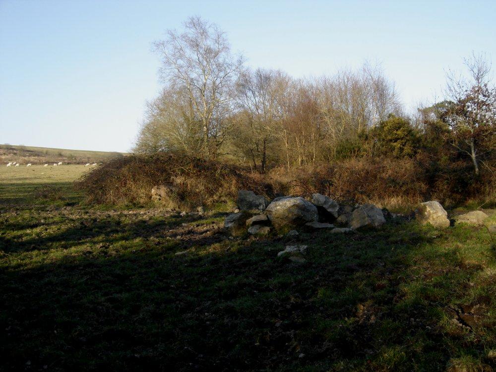 Stone herd