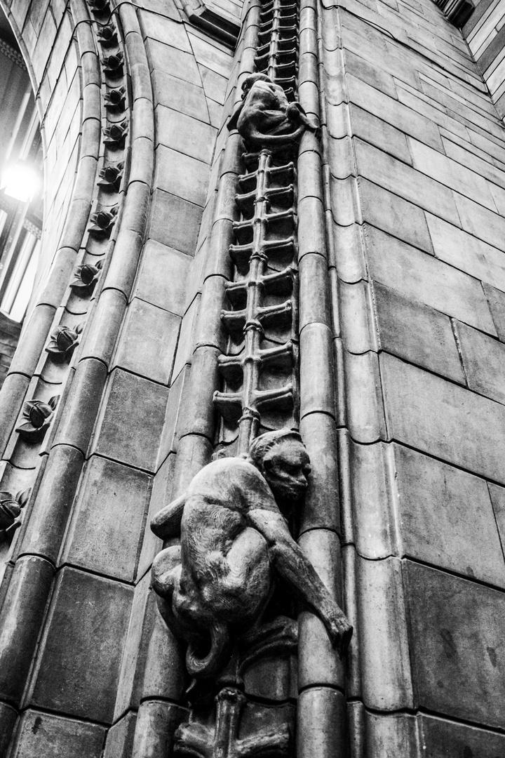 Stone Monkeys