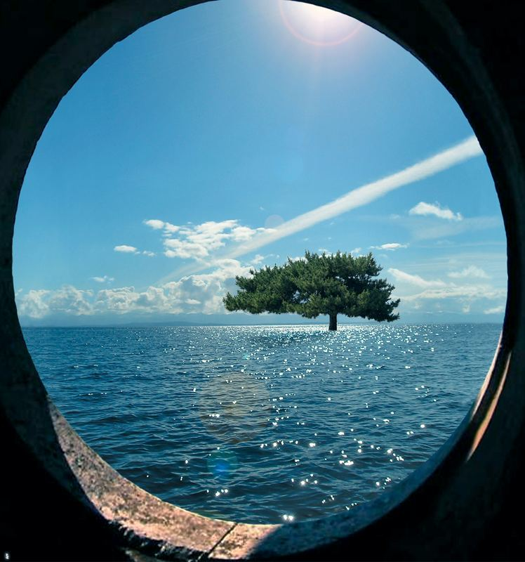 Stone Ship Dream