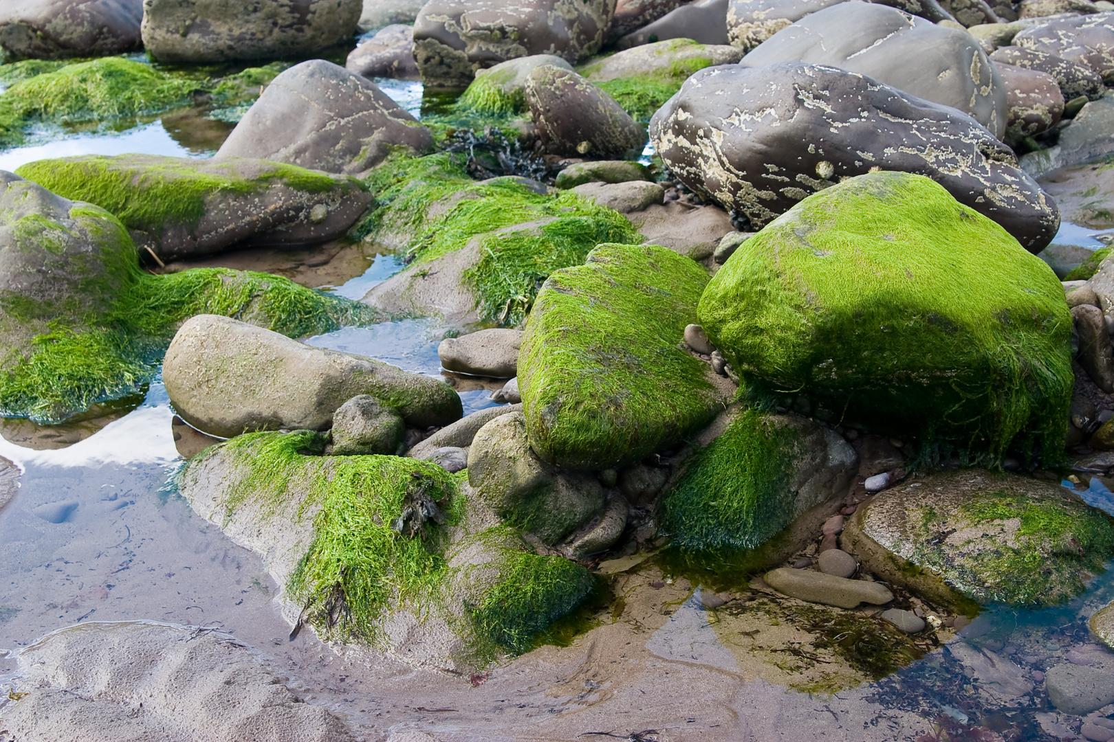 [ stones of ireland ]