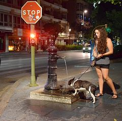 Stop! Hunderl hat Durst! §:-))