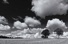 Stoppelfeld und Wolken