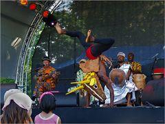 Storchenfest (XIII)