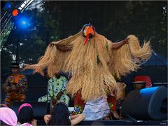 Storchenfest (XIV)