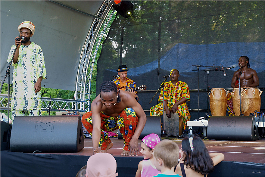 Storchenfest (XVII)
