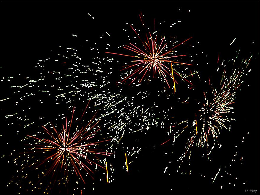 Storchenfest (XXIII)