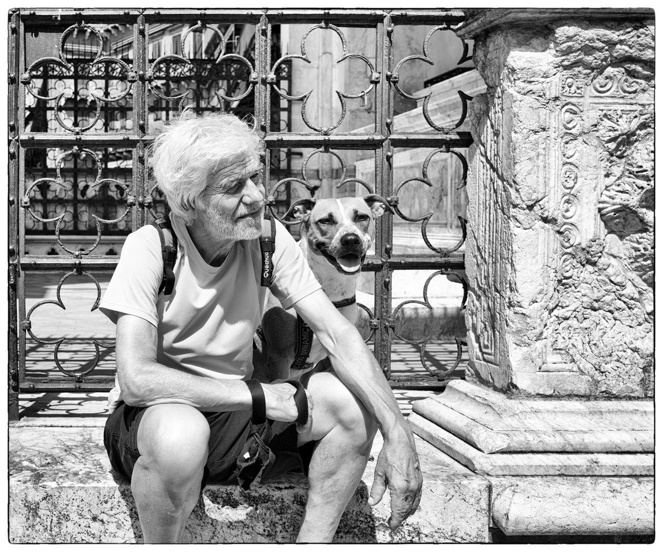 Storie di cani da Siena III