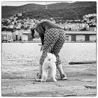 Storie di cani da Trieste II