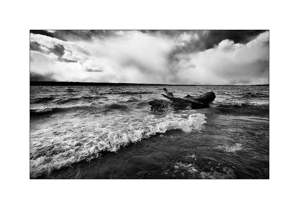 [ stormy ]