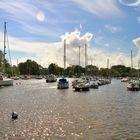 Stour river, Christchurch, Dorset, UK