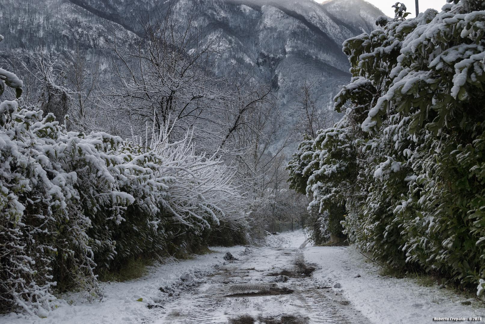 Strada verso il lago