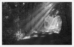 Strahlen und Licht