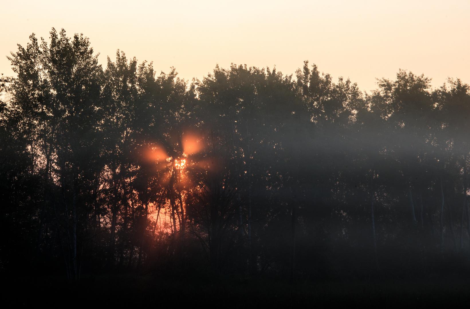 'Strahlender' Nebel  .... ;-)