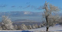 Strahlender Winter auf der Nollendorfer Höhe mit Blick zum Hohen Schneeberg...