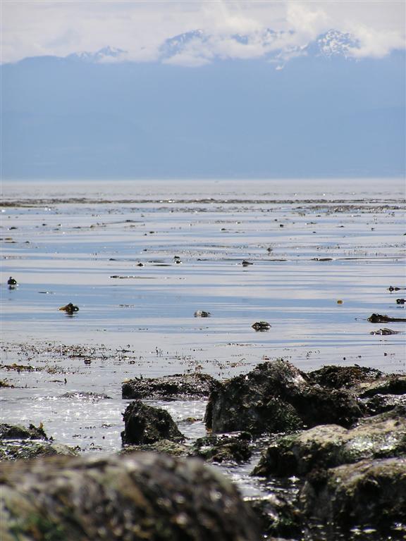 Strait of Juan de Fuca, BC