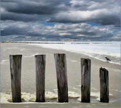 Strand auf Ameland