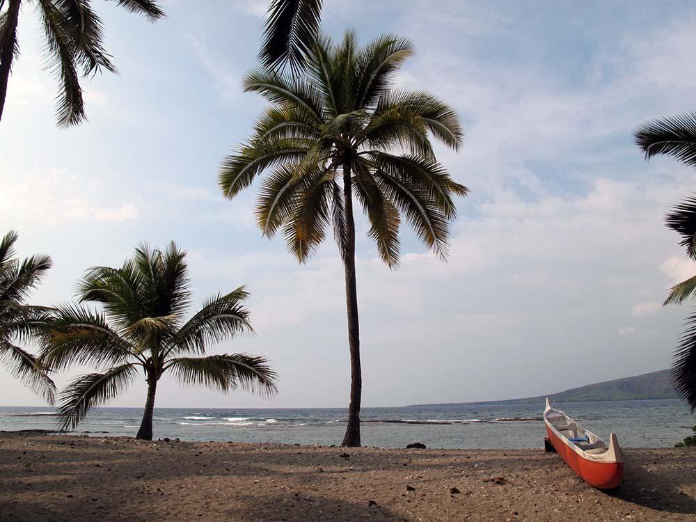 Strand auf Hawaii mit kleinem Boot und Palmen