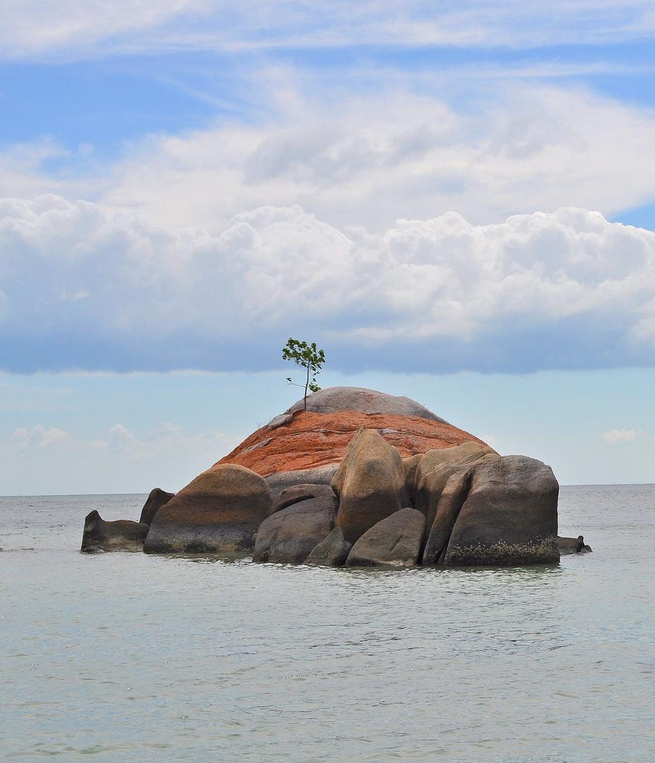 *Strand der Träume*