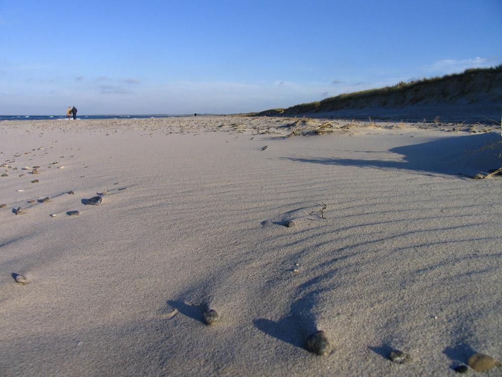 Strand Dierhagen
