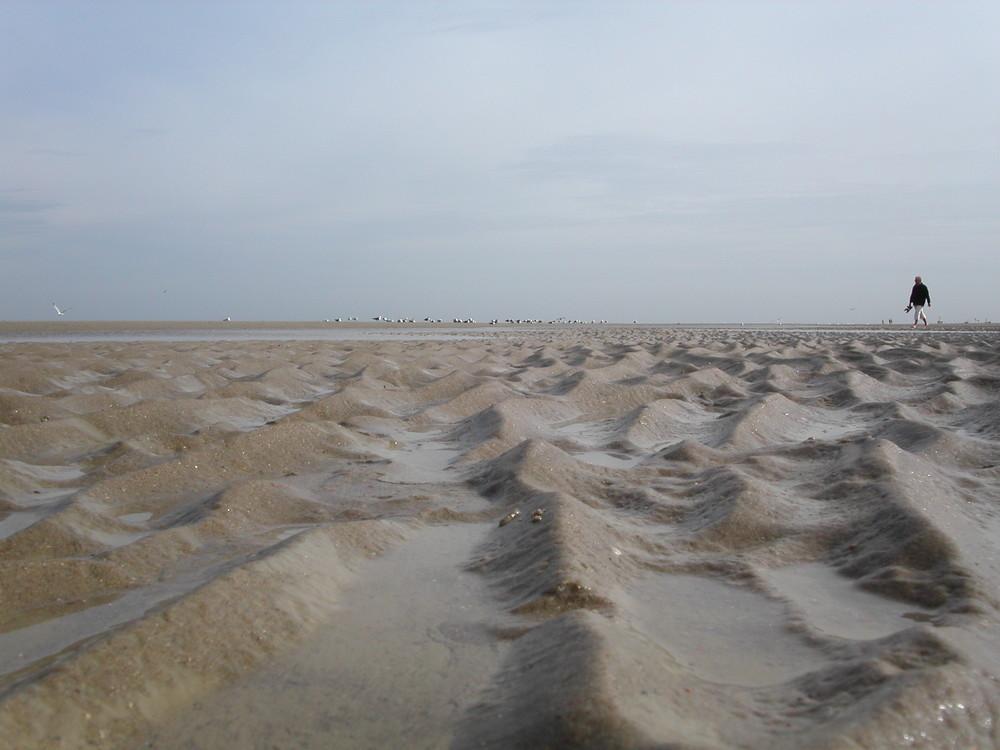 Strand ganz nah