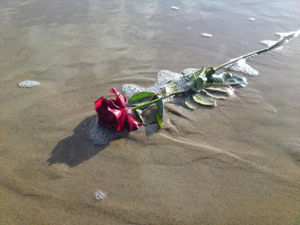 Strand Gut