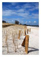 Strand I