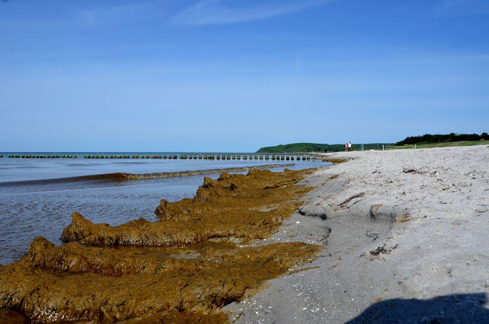 Strand im Mai