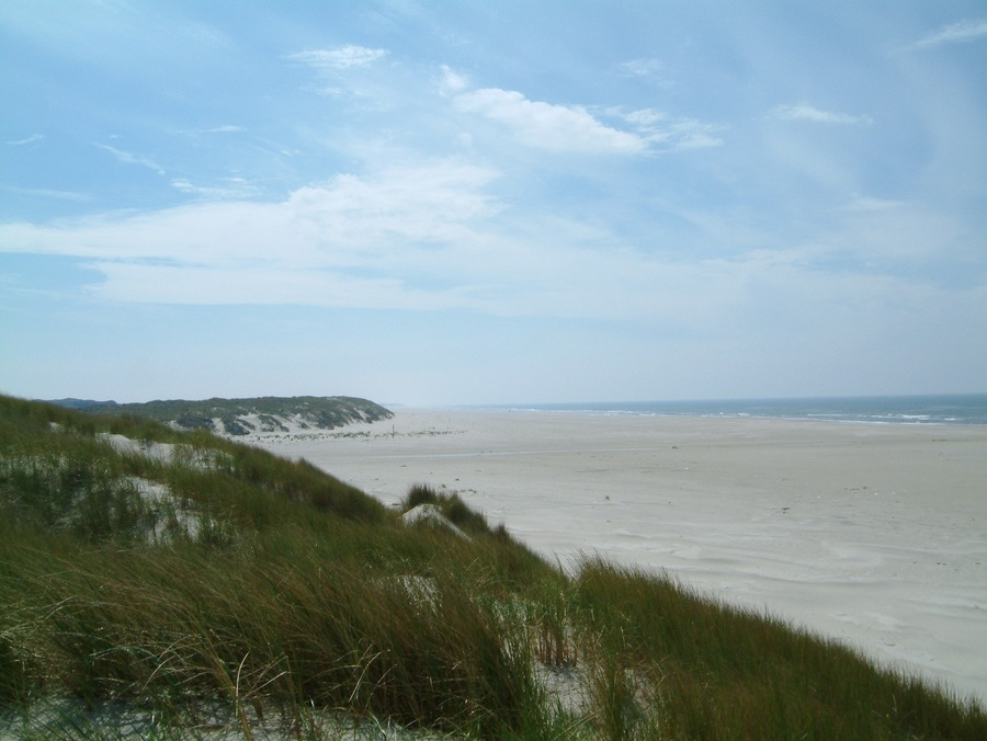 Strand in Vejers