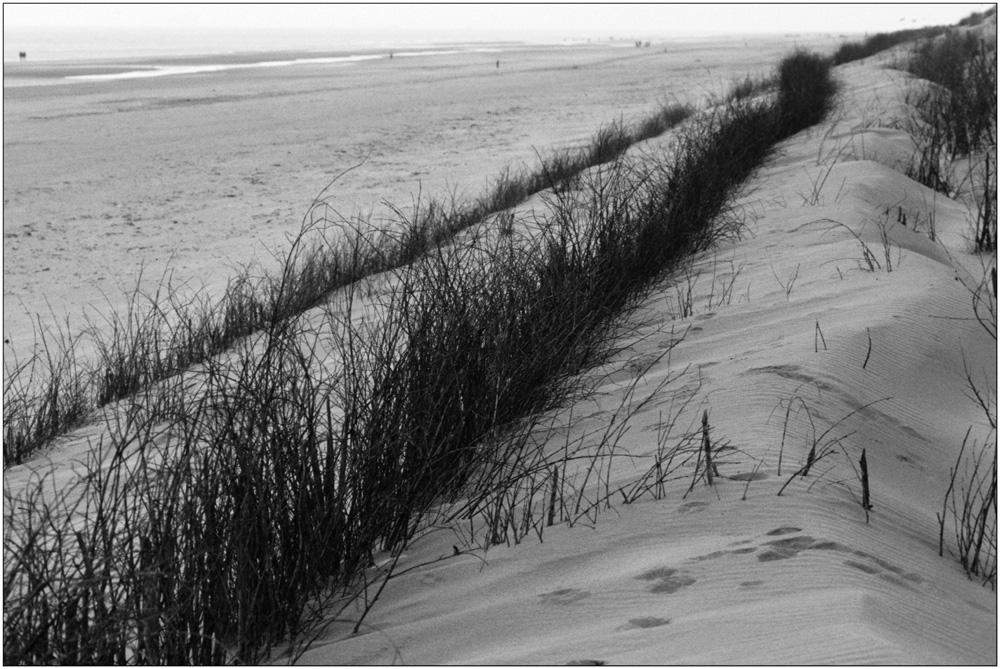 Strand mit Gestrypp sw
