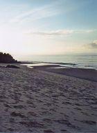 Strand nördlich von Cairns