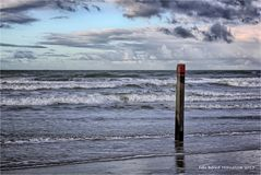Strand Paal 28 op Texel ....