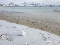 Strand-Schneeball