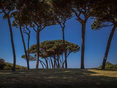 Strand von Baratti