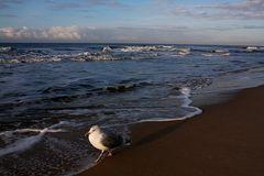 Strandaufsicht in Westerland