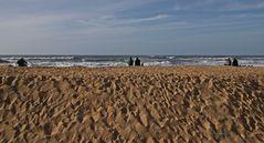 Strandbeobachtung....