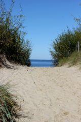 Stranddüne in Swinemünde