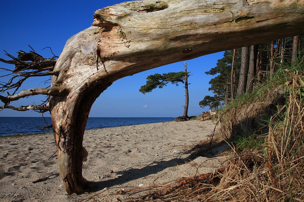 Strand(durch)blick