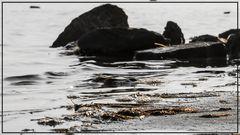 Strandgemälde