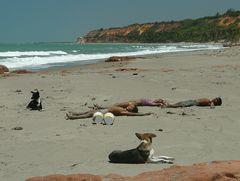 Strandkinder und -Hunde