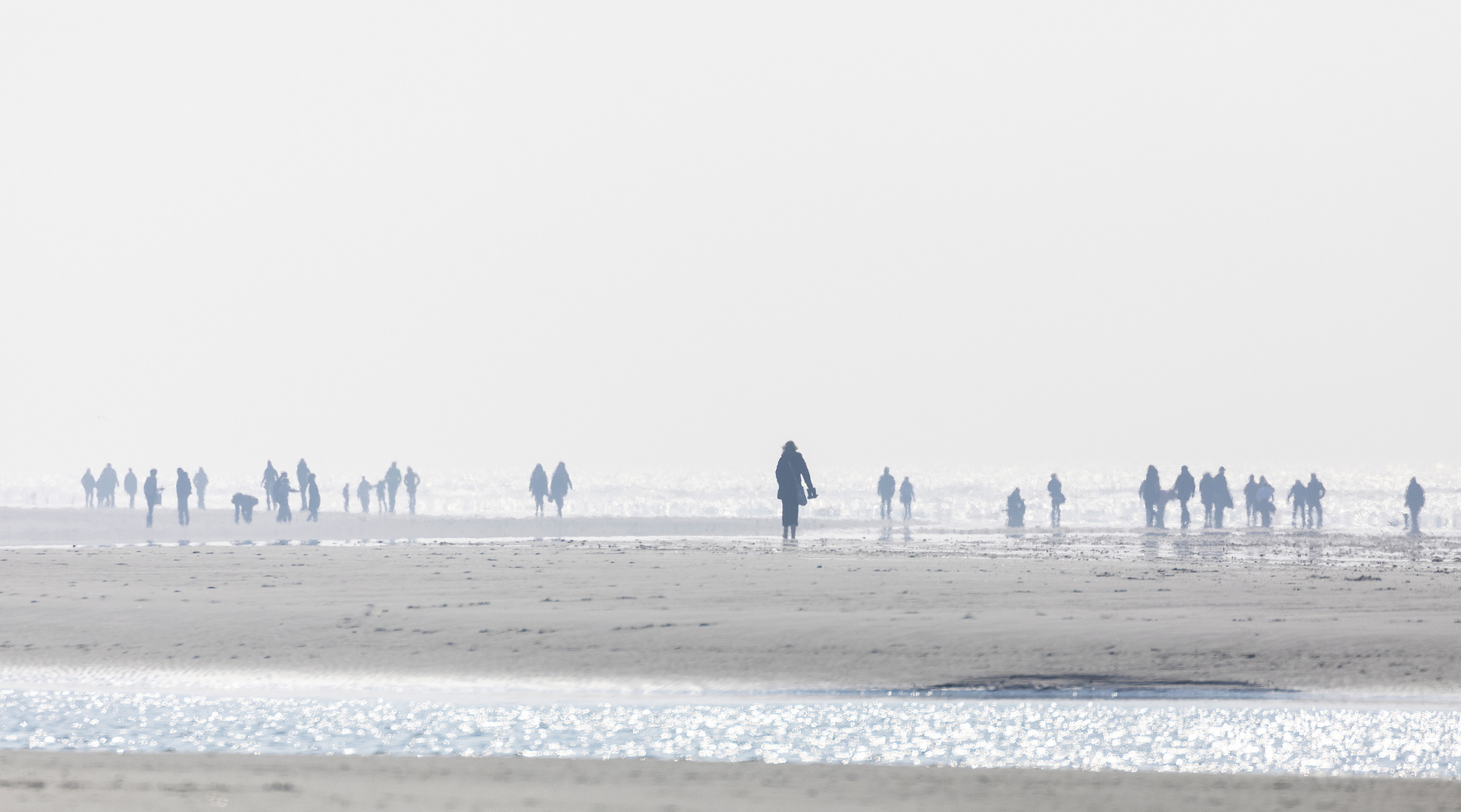 ~ Strandläufer ~