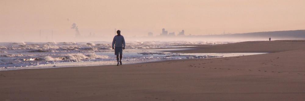 Strandläufer Holland