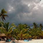 Strandleben unter Palmen