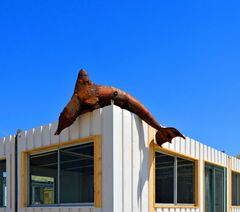 Strandpavillon im Bau - leckerer Fisch schon da !