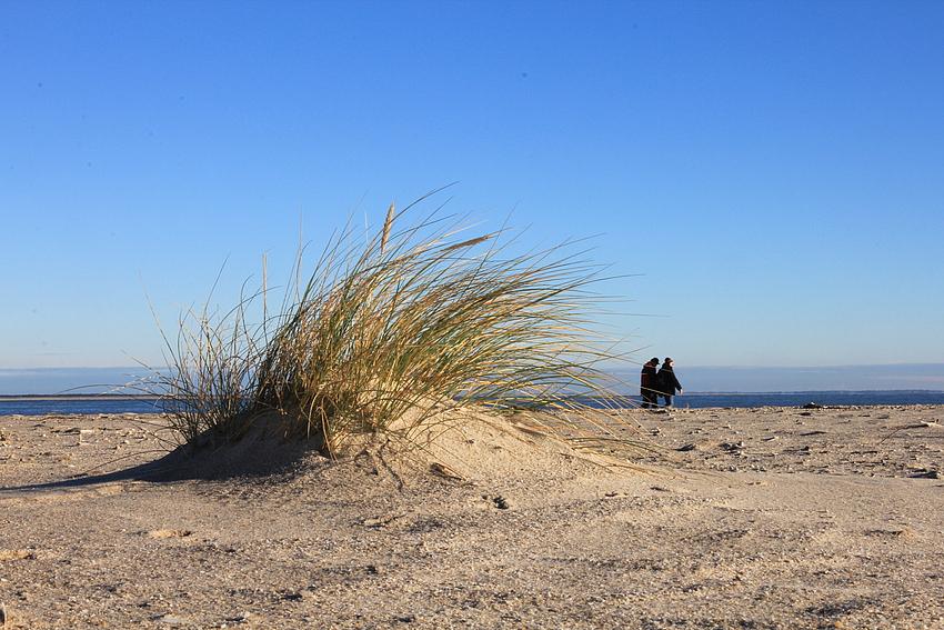Strandspaziergang im Winter...