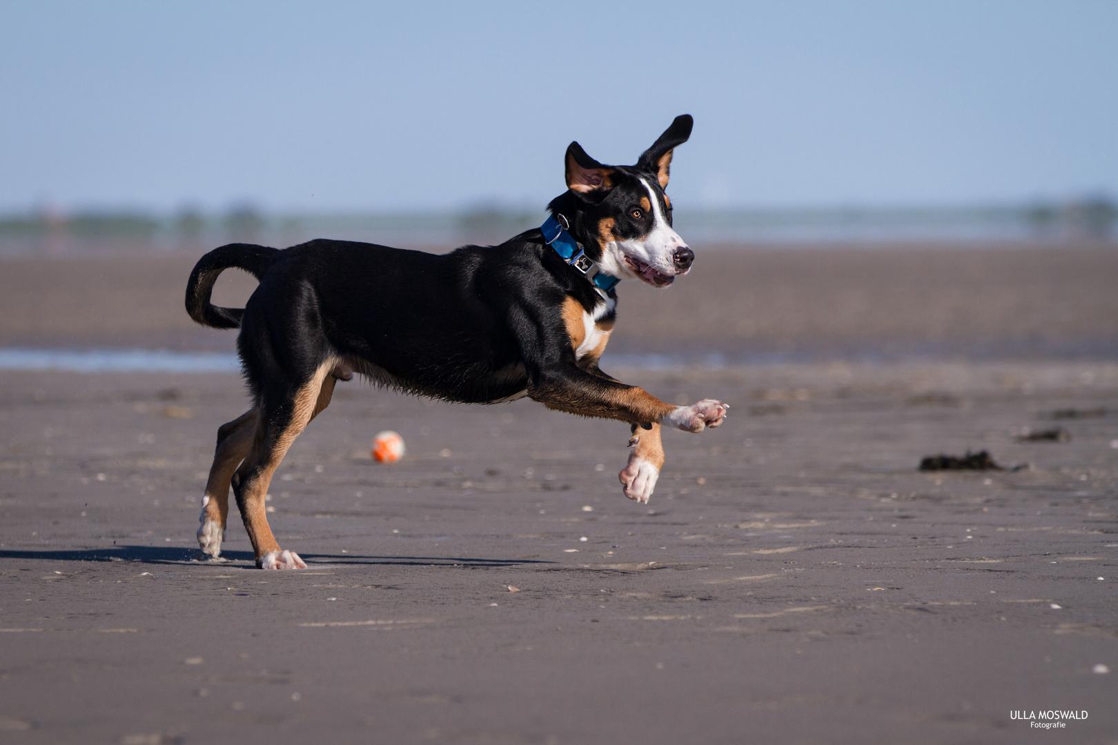 ...Strandspielchen...