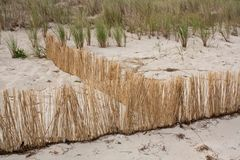 Strandstilleben