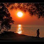 ...strandweit erschallt der Herbstmöwenschrei