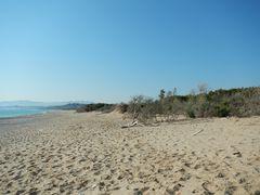 Strandwüste